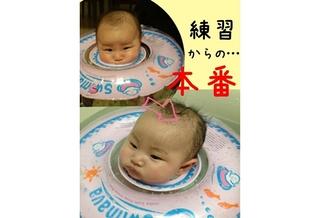 no255_image_2013_Jan_09_1551(ここにゃん)s.jpg