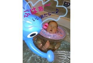 no366_image_2013_Jan_29_2316(ダイ)s.jpg